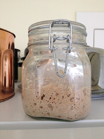 After four hours, the starter is not quite double in volume