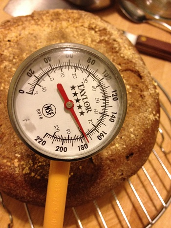 After 40 minutes baking at 450 degrees, the internal temperature is just under 180