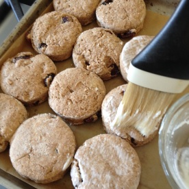 14. Place the biscuits on the baking sheet so they touch all round and brush lightly with the yogurt