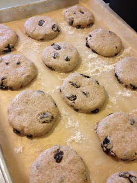 The muffins cut and ready to rise in a warm spot