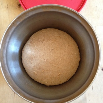The boule, after rising at 62 degrees Fahrenheit for four hours, is full to the touch