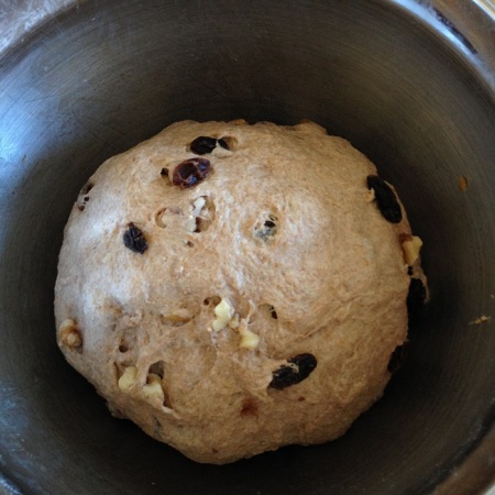 The dough, after mixing in the salt, raisins and walnuts