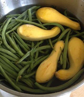 Washing a fresh mess of organic green beans and yellow summer squashes from the local green grocer