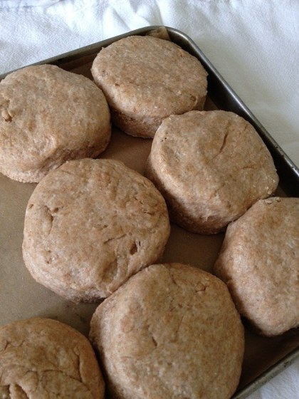 Set the biscuits in the baking pan so they touch the sides and each other