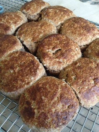 Whole wheat biscuits too hot to touch