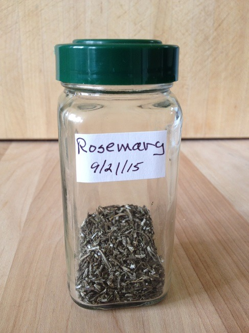 Freshly dried rosemary