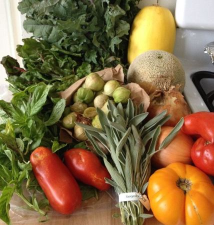 Assorted vegetables and fruits from our latest farm box