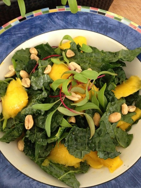 Mango kale salad with freshly picked beet greens from our micro greens windowsill garden