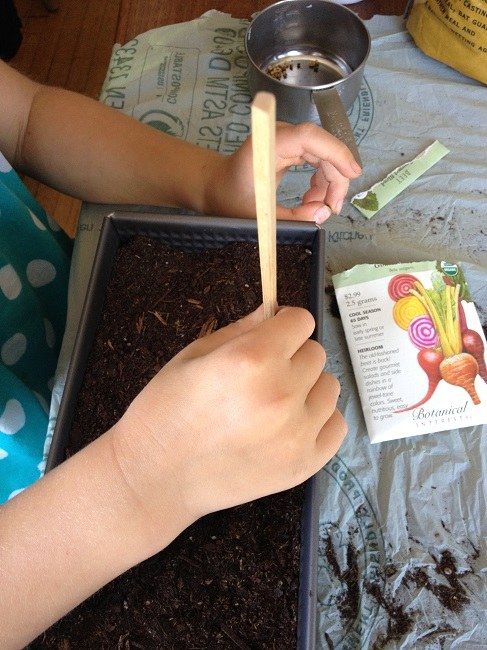 Fun poking seed holes with a chopstick