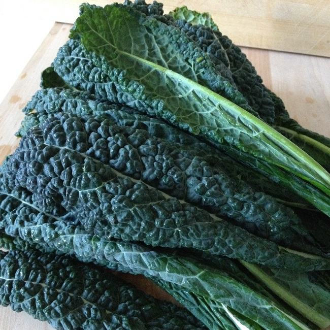 Kale, like so many cruciferous and leafy green vegetables, feeds our bodies plenty of minerals, such as calcium and iron, plus the trace minerals and vitamins that help us absorb them