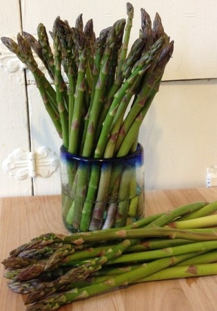To keep asparagus fresh, trim the dry ends from the bottom of the asparagus stalks, then stand them in about an inch of water