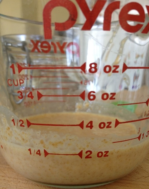 Day 4: We measured out just 1/4 cup of our starter; the rest we set aside in the refrigerator for adding to pancakes or muffins later.