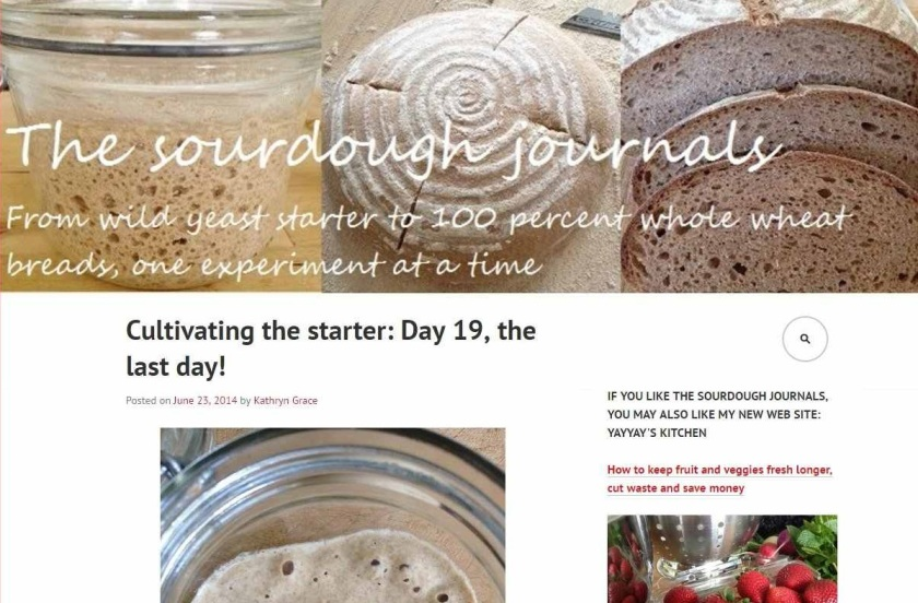 Screen shot of The Sourdough Journals